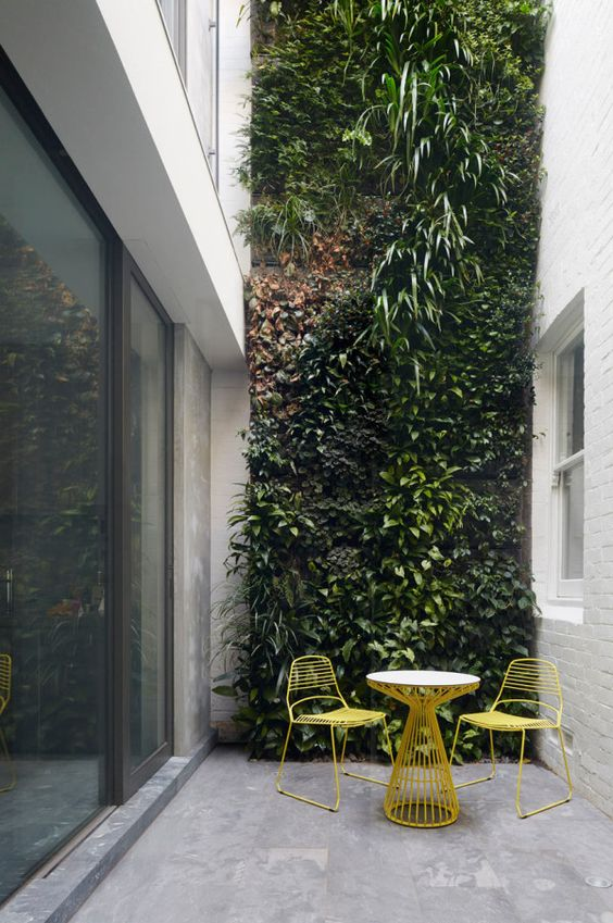 External-Courtyard-Space-With-Vertical-Wall