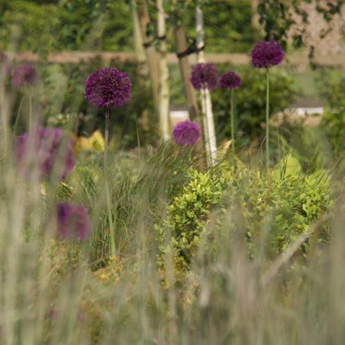 Garden Design Suffolk 1